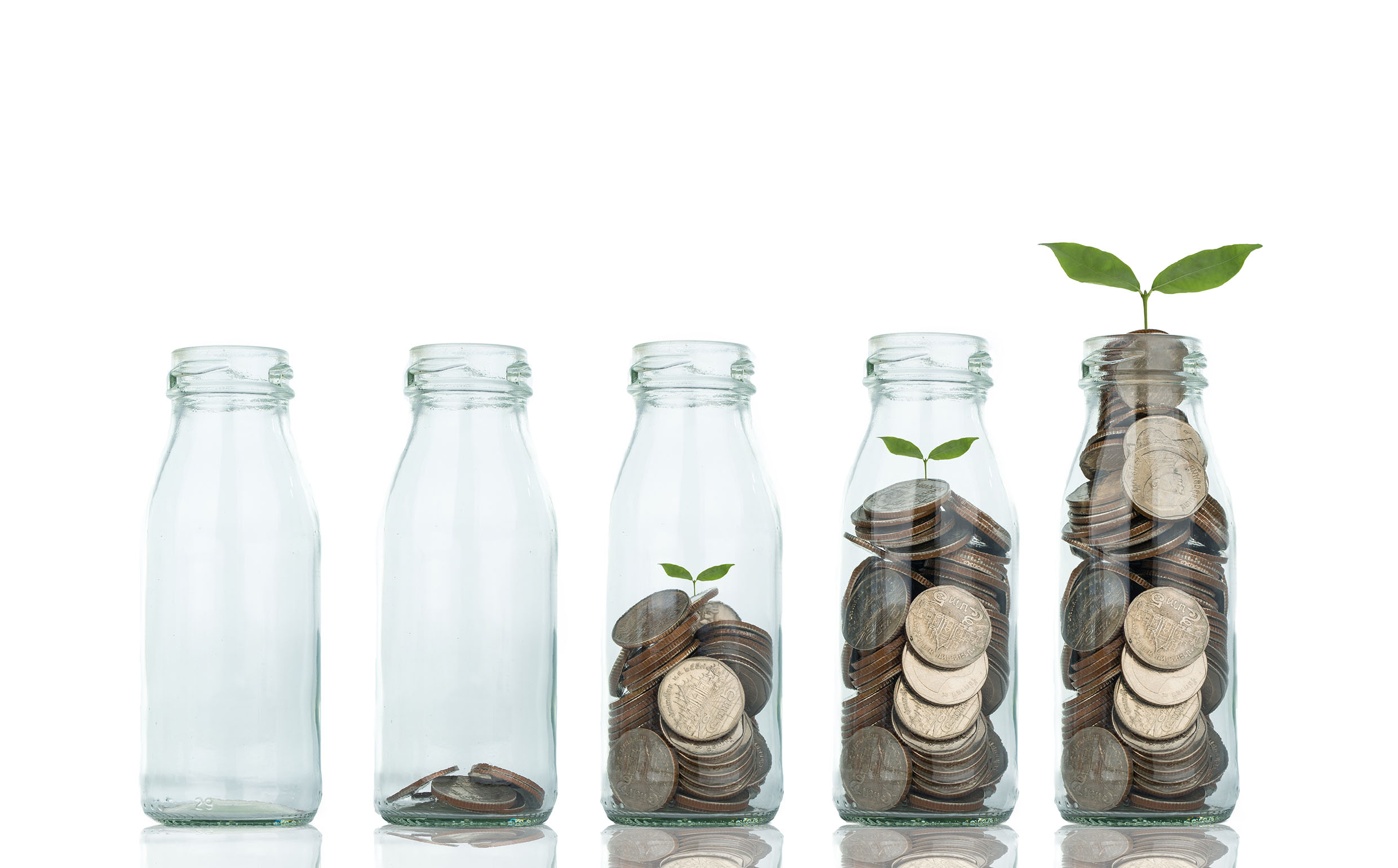 Growing plant step with coin money ,save your money for the future.